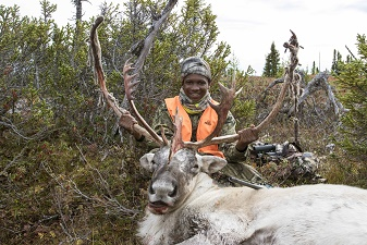 james brown caribou bull